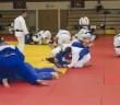 Judo edzőtábor