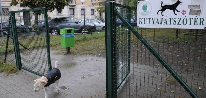 Állatvédelmi program indul Zuglóban