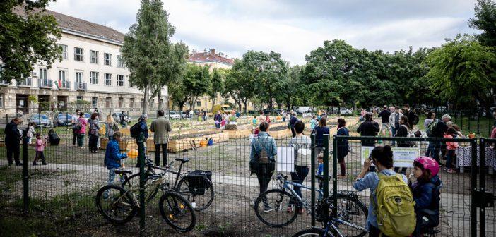 Megnyitott a második közösségi kert