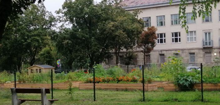 A második közösségi kert is kizöldült