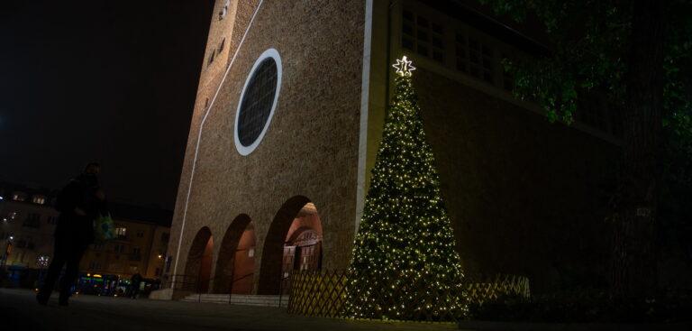 Megérkezett Zugló karácsonyfája