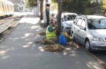 Mexikói út takarítás