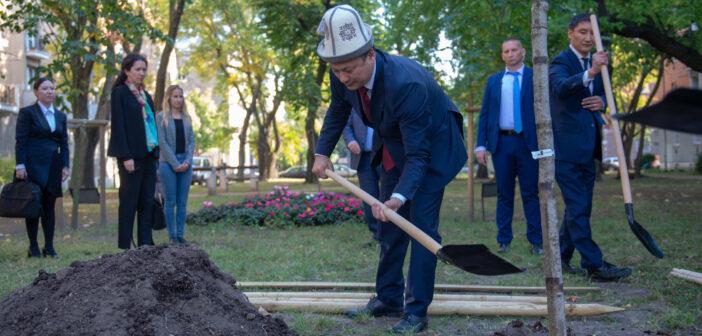 Ruszlan Kazakbajev kirgiz külügyminiszter fát ültet az Ajtmatov parkban - fotó